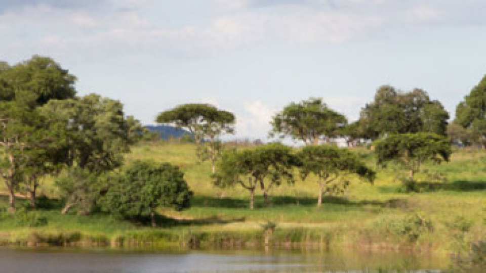 Likweti Estate
