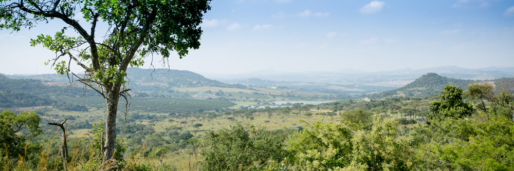 View of Likweti Plains